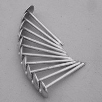 Plain Shank Roofing Nail, Available from 1 to 3-inch Length