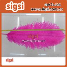Color personalizado y el tamaño de polla plumas para decoracion