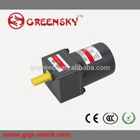Professional hub motor 110v ac small gear reduction electric motor with CE certificate