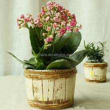 Imitated barrel 6 inch small ceramic planter glazed pottery craft