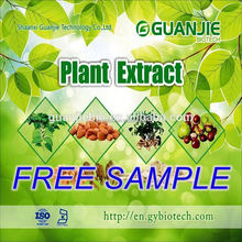 Reliable Supplier Pure green tea extract