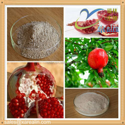 GMP factory supply Hot Sale High quality Pomegranate Peel Extract