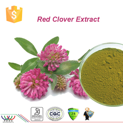 HACCP Kosher 8% ~ 40% Isoflavone HPLC red clover extract