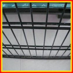2015 Hot sale double wire mesh dog fence/double welded wire mesh fencing/animal double wire mesh fence made in china supplier