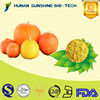 SunShine 100% Natural Pure Pumpkin Fruit Powder for Beverage