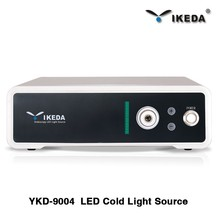 Portable LED light source for endoscopes