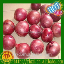 20kg Mesh Bag Packing Fresh Onion Red/Yellow/Purple