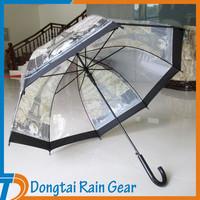 Transparent Clear Dome Umbrella, Manual Open POE Umbrella with custom design