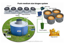 PUXIN high biogas production for biogas plant to generate electricity 60m3/day