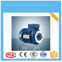 High torque low rpm three phase asynchronous electric motor