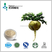 Maca Extract 20:1/natural maca root extractpowder from FDA Certified Manufacturer