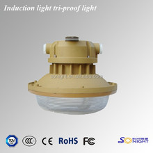 China factory price IP67 led tri-proof light
