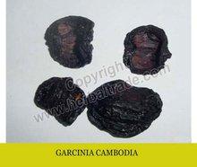 GARCINIA CAMBODIA DRIED