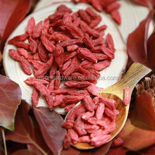 Goji for dried fruits importers