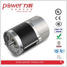 Brushless dc motor for fuel pump