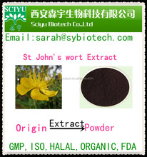 Natural Herbal Extract St johns wort