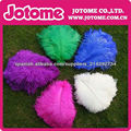 Luxury ostrich feather for DIY feather fan/bouquet/party decorations