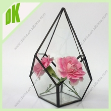 Wholesale Wedding&home decor favor - air plant hanging glass terrarium //Air plants glass bottle terrarium vase