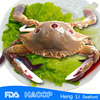 Frozen Three Spotted Crab, Three Spotted Crab ,Frozen Crab (Whole Round )HL 002