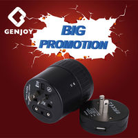 2015 Best Promotional Gift Electric India Travel Adapter with Surge Protector
