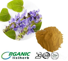 Manufacture direct supply natural forskolin extract 10% 20% /Coleus forskohlii extract powder
