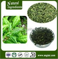 GMP factory supply 100% natural Siberian ginseng leaf tea