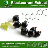 GMP Factory High Quality Black Currant Powder Extract