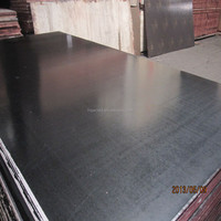 film faced shuttering plywood/concrete form plywood board/ cheap plywood