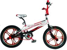 20 INCH BMX BIKE/SINGLE SPEED