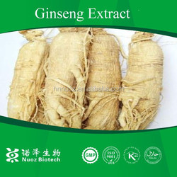 Kosher certified factory/China herbal extract Ginseng root extract