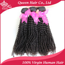 Queen Hair products Human Hair Extension Brazilian Virgin Kinky Curly