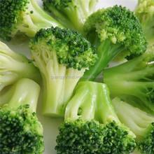 frozen vegetable fresh broccoli in low price