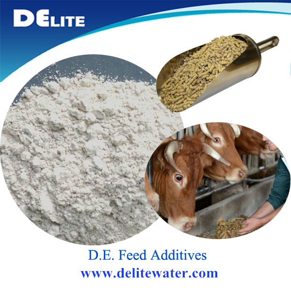 Natural Food Grade Diatomaceous Earth Contains  Trace Minerals