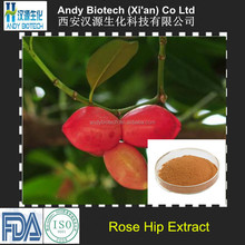 Antioxidation Factory Supply Pure Natural Rose Hip Extract