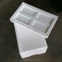 ECO-friendly EPS insulated styrofoam box with a lid and company logo