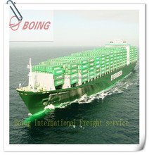 Cheap Sea Freight/Shipping From Shenzhen/guangzhou/shanghai/ningbo/tianjin/xiamen china to Montego Bay -----------Allen