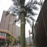 SJZJN 744 Wholesale Decorative Big Date Palm Tree,Unique Design Big Date Palm Tree High Quality