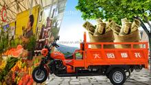 beautiful cheap high quality 150cc 200cc air cooled petrol powered 3 wheel motorcycle car