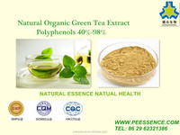 Organic Green Tea Extract 95% for dietary supplements