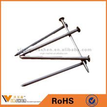 Cheap wholesale common nail wooden nails iron nails