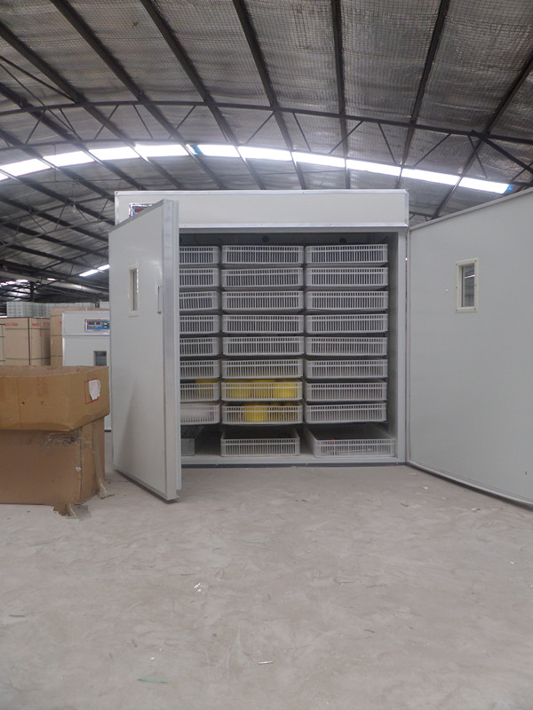 Solar Incubator For Hatching Eggs Indian Solar Incubator