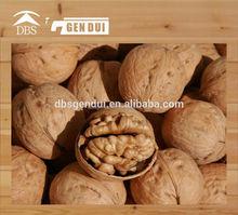 Walnut organic dried fruit organic dried fruit