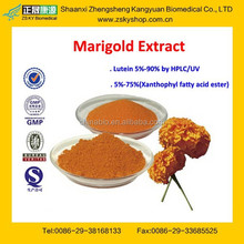 GMP Certified Manufacturer Supply 5%-90% Lutein Extract