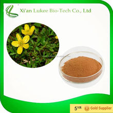 Helping lower blood pressure Cat's Claw Extract 5%Alkaloids Ramulus Uncariae cum Uncis