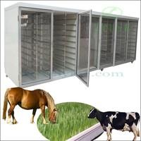 barley grass seeds sprouting machine / Commercial fodder barley grass seeds / barley grass seeds