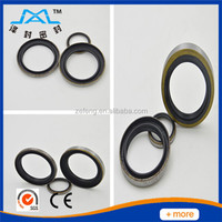 AB DHS LBH DKBI types hydraulic oil seal for industrial use