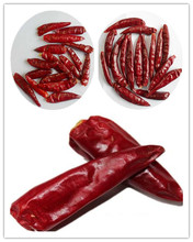 chaotian red hot chili pepper