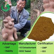 Manufacturer Supply Fallopia Multiflora/He Shou Wu Root Extract Powder