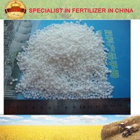 direct producer and industry chain Ammonium Calcium Nitrate
