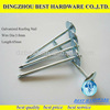 galvanized umbrella head roofing nail of African